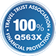 100% Finance Protected Logo